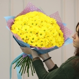 13 Yellow chrysanthemums