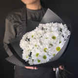 7 Chrysanthemums