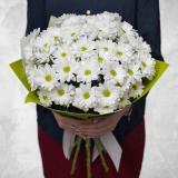 11 White chrysanthemums