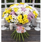Chrysanthemum – the flower of autumn