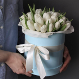 51 white tulips in a box