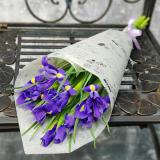 11 Irises
