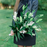 5 White lilies