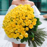 101 Yellow rose