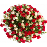 55 spray roses mix