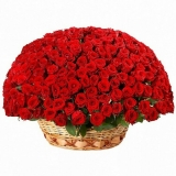 "Basket ""251 red roses"""
