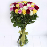 49 Coloured roses