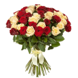 51 Red-cream rose