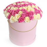 101 pink and white roses in a box