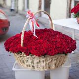 "Кошик ""501 червона троянда"""