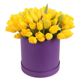 51 yellow tulip in a box