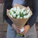 25 White Tulips