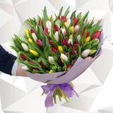 75 Разноцветных тюльпанов