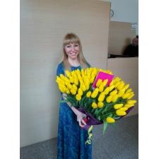 101 жовтий тюльпан