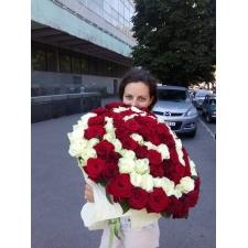 101 червоно біла троянда