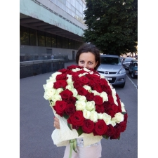 101 red white rose