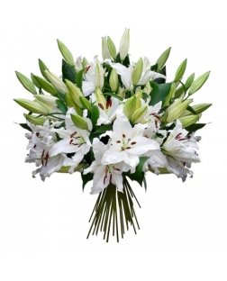 21 White lily