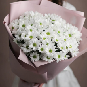 11 White chrysanthemums