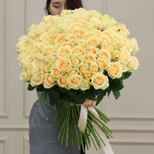 101 Кремова троянда