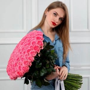 101 Pink rose