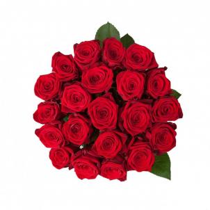 23 Червоні троянди