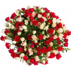 55 кущових троянд mix