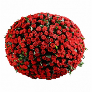 "Корзина ""251 троянда Ель Торо"""