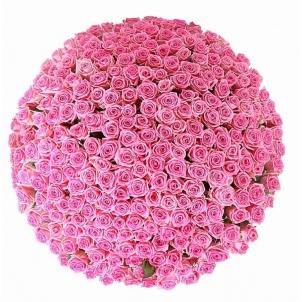 "Basket ""251 pink roses"""