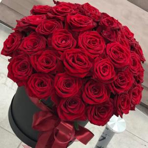 51 червона троянда в шляпной коробці