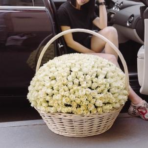 """Корзина """"351 белая роза"""""""
