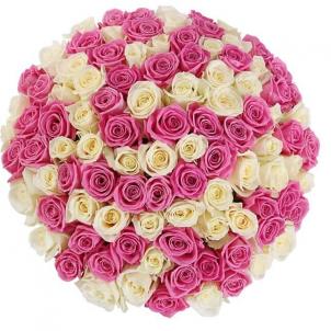 101 розово-белая роза в коробке