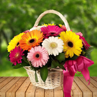 "Basket ""15 colored gerberas"""
