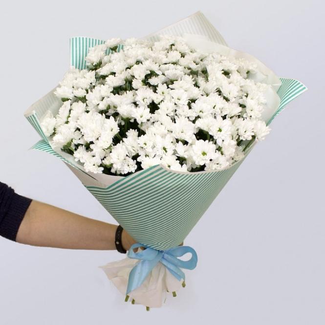 15 White chrysanthemums