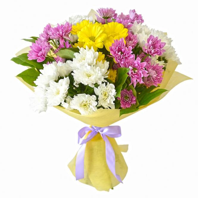 11 Chrysanthemums