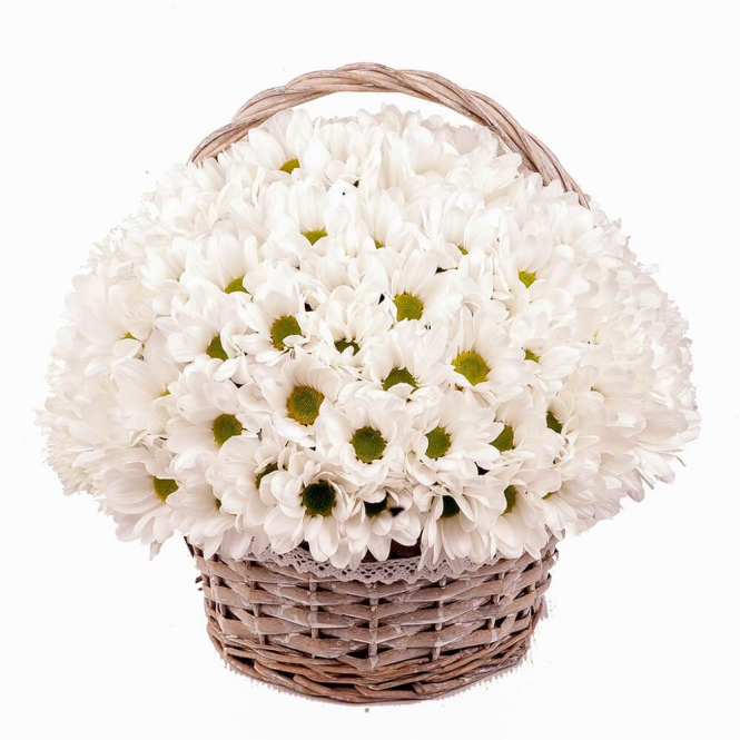"Basket ""Daisy joy"""