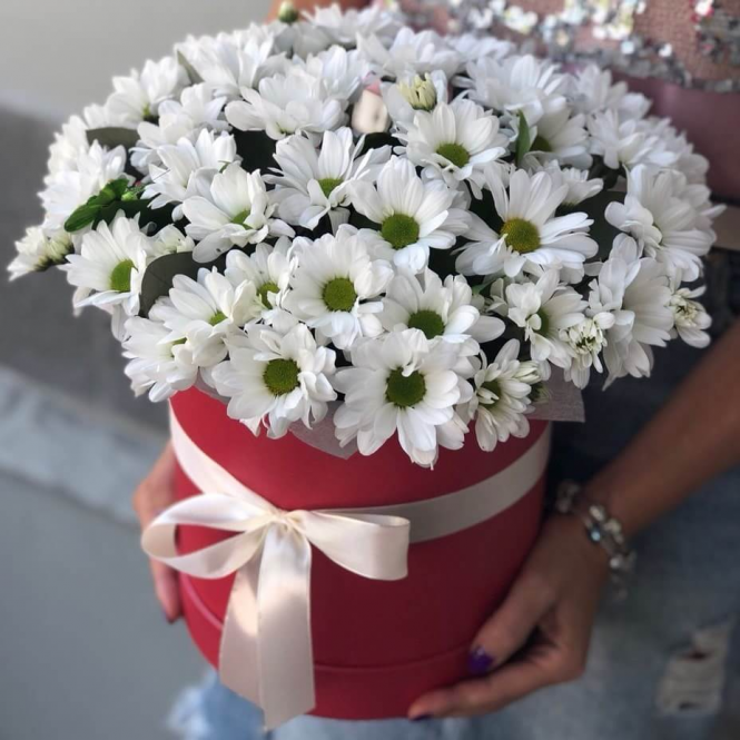 Chrysanthemums in a hatbox