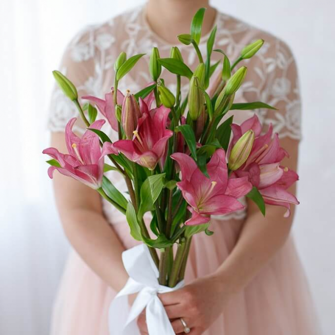 5 Pink lilies