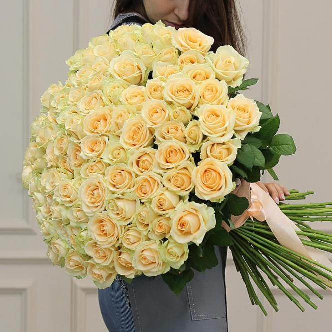101 Creamy rose