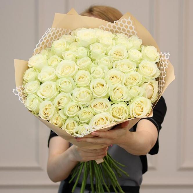 51 Біла троянда
