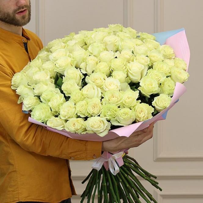 75 White rose