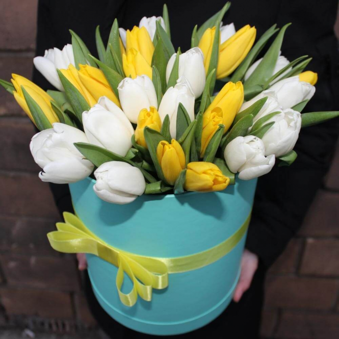 35 White and yellow tulips in a box