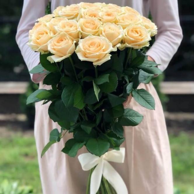 25 Cream roses
