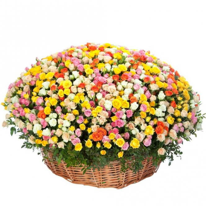"Basket ""151 spray roses"""