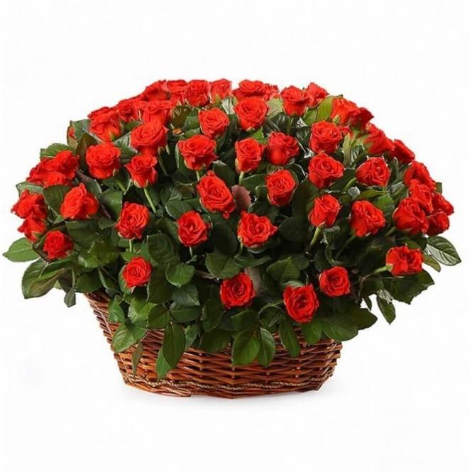 "Basket ""Roses 101 El Toro"""