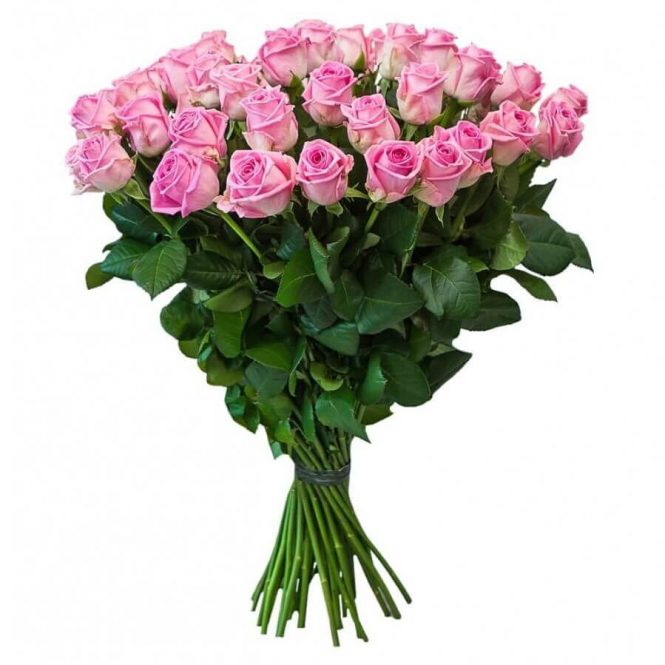 45 Pink roses