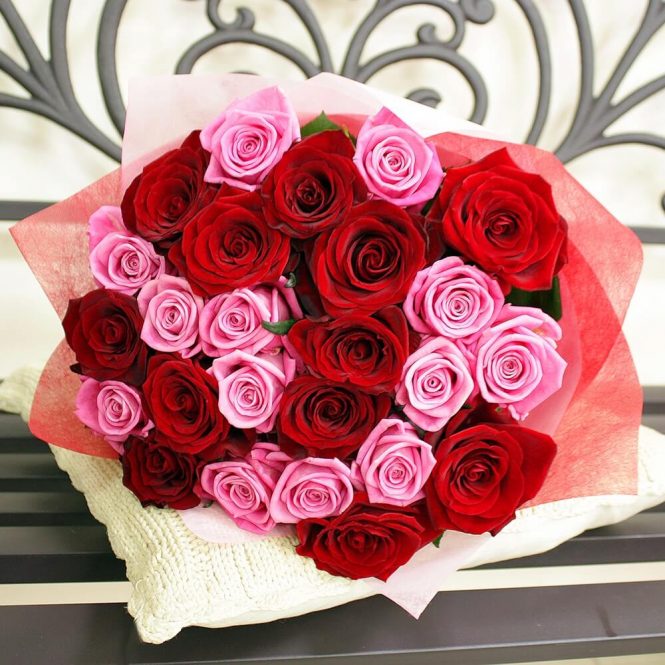 21 Червоно-рожева троянда