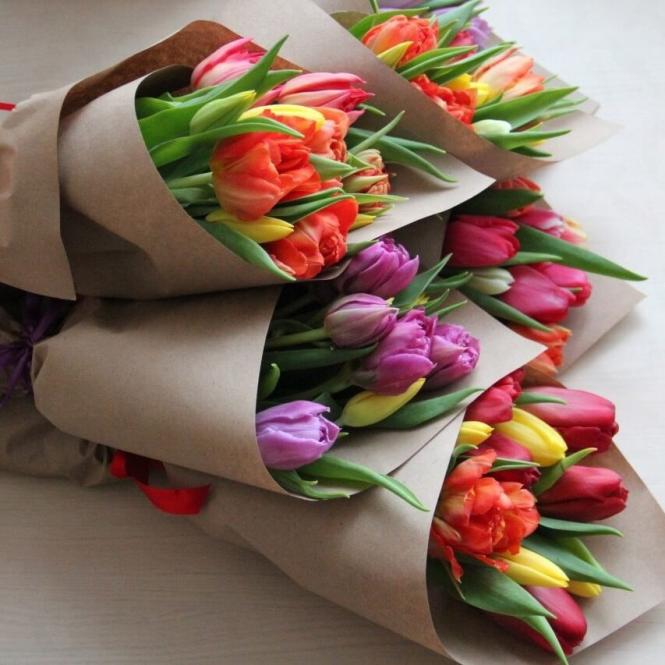 11 Тюльпанів мікс