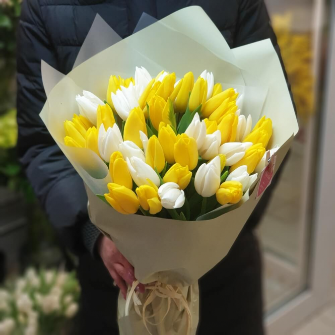 51 White and yellow Tulip