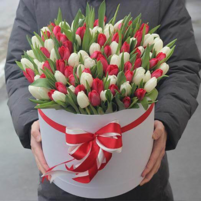 101 Red and white tulip in a box